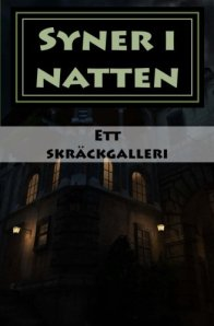 syner_i_natten_1_cover